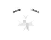 ZBH-Logo-Wellenstyn